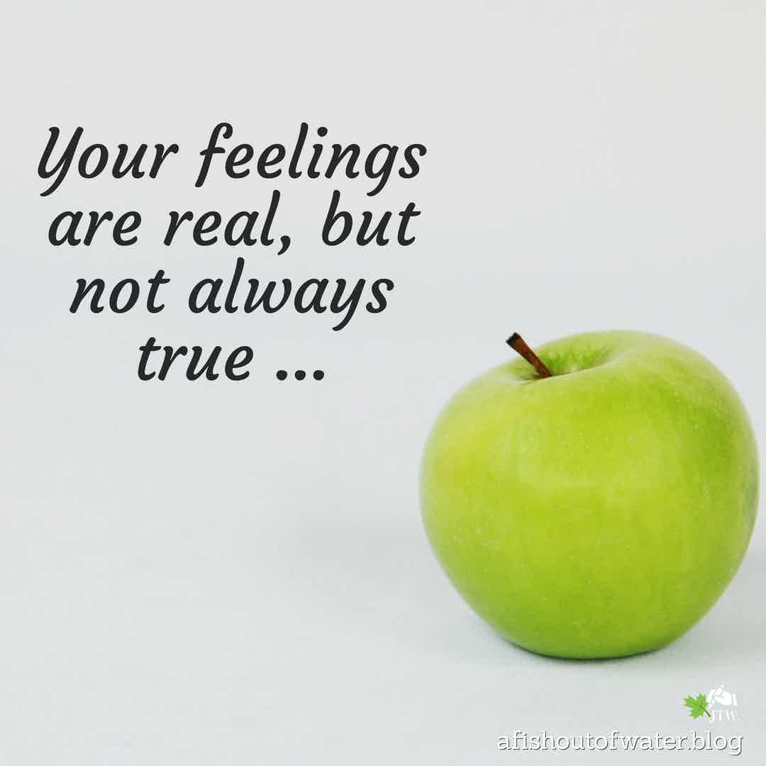 Feelings lie